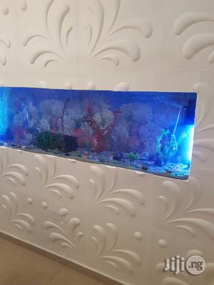 Aquarium Supplies   Fish for sale in Abuja (FCT) State, Wuse 2