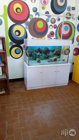 Ready Made Aquariums | Fish for sale in Lagos State, Ikeja