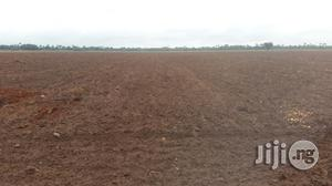 Fertile Farmlands for Rent Minimum of 4years | Land & Plots for Rent for sale in Edo State, Ubiaja
