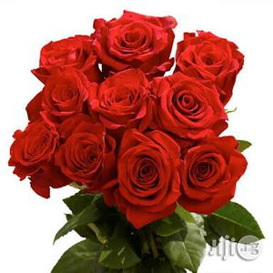 Fresh Red Roses Natural Rose Flower Bunch Of 10 | Garden for sale in Plateau State, Jos