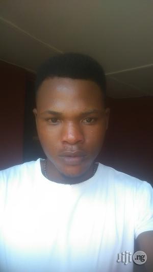 Seeking Work CV   Driver CVs for sale in Abuja (FCT) State, Gwarinpa