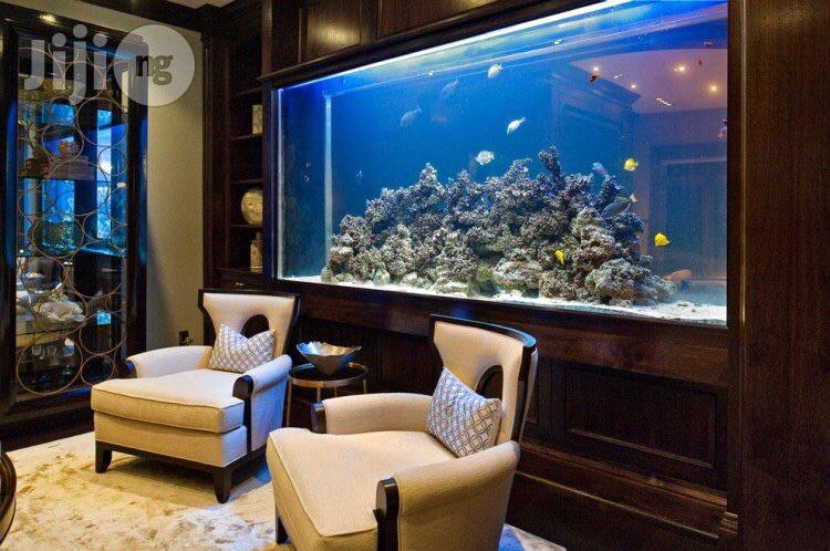 Home And Hotel Aquariums | Fish for sale in Owerri, Imo State, Nigeria