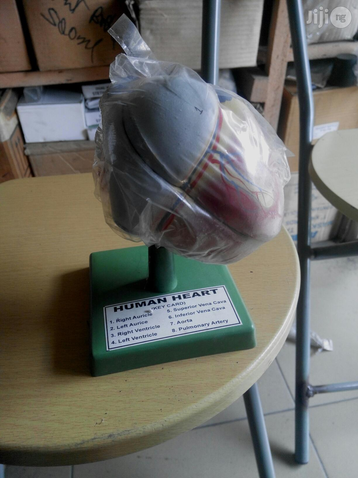 Human Heart Model | Medical Supplies & Equipment for sale in Port-Harcourt, Rivers State, Nigeria