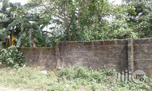 Two Plots of Land at Atali Farm Estate, Off Tank Junction | Land & Plots For Sale for sale in Rivers State, Obio-Akpor