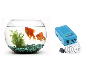 Fish Bowl Aquarium Starter Kit + 2 Fish | Fish for sale in Lagos State, Surulere