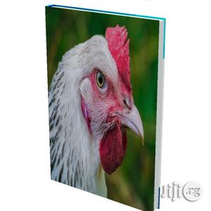 Chicken Feed Production Manual Video | Books & Games for sale in Abuja (FCT) State, Nyanya