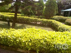 1 Acres Functioning Hotel For Sale In Ibadan | Commercial Property For Sale for sale in Oyo State, Oluyole