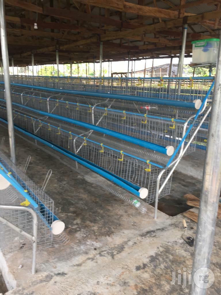 Archive: Dekoraj Farms Layers Battery Cage