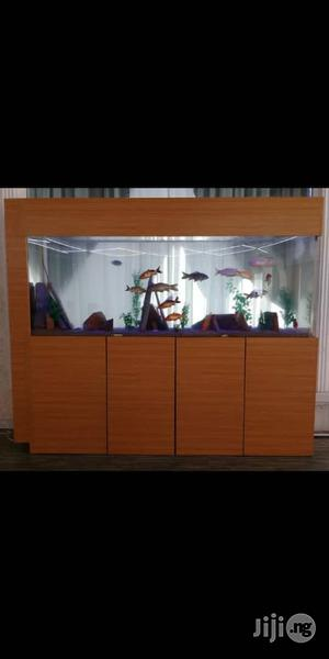 Aquariums, Wall Bubbles, Spa   Fish for sale in Abuja (FCT) State, Garki 1