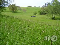 Land for Sale/Lease   Land & Plots For Sale for sale in Rivers State, Port-Harcourt