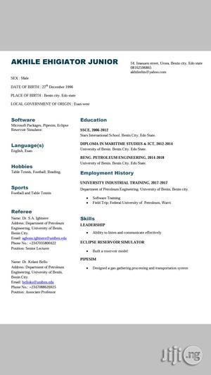 Wordpress Website Developer (Remote) | Technology CVs for sale in Edo State, Benin City