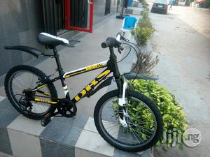 DBS Children Bicycle 20 Inches   Toys for sale in Abuja (FCT) State, Dutse-Alhaji