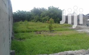 Dry Plot of Land for Sale at Lakeview Estate Amuwo-Odofin Lagos State   Land & Plots For Sale for sale in Lagos State, Amuwo-Odofin