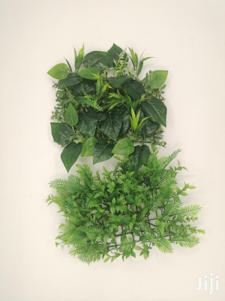 Quality Wall Plants For Sales | Garden for sale in Obot Akara, Akwa Ibom State, Nigeria