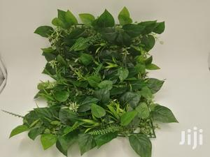 Quality Cheap Wall Plants For Sales | Garden for sale in Bayelsa State, Ogbia