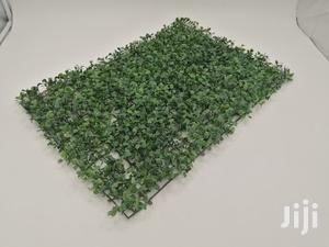 Affordable Quality Wall Plants At Sales | Garden for sale in Delta State, Ugheli