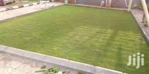 Turf Grass Astro Artificial Carpet Grass   Landscaping & Gardening Services for sale in Lagos State, Ikeja