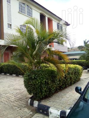 5bdrm Duplex in Katampe for Sale | Houses & Apartments For Sale for sale in Abuja (FCT) State, Katampe