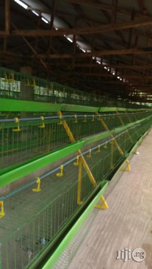 Automatic Battery Cages For Laying Birds | Farm Machinery & Equipment for sale in Lagos State, Lekki