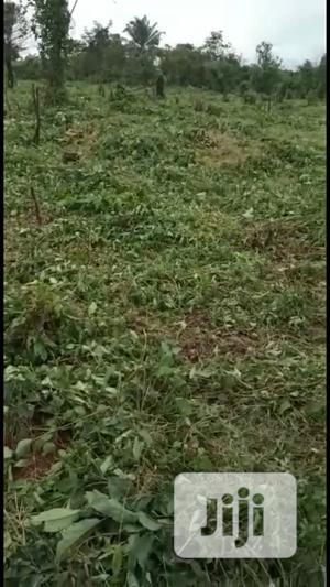 50ft By 100 And 100 By 100 For Sale   Land & Plots For Sale for sale in Edo State, Benin City