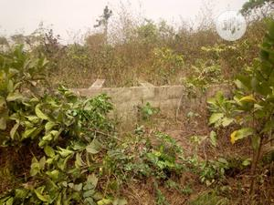 Half Plot Of Land That Has 2bed Foundation On It | Land & Plots for Rent for sale in Oyo State, Ibadan