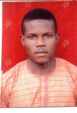 Statistician | Research & Survey CVs for sale in Lagos State, Ilupeju