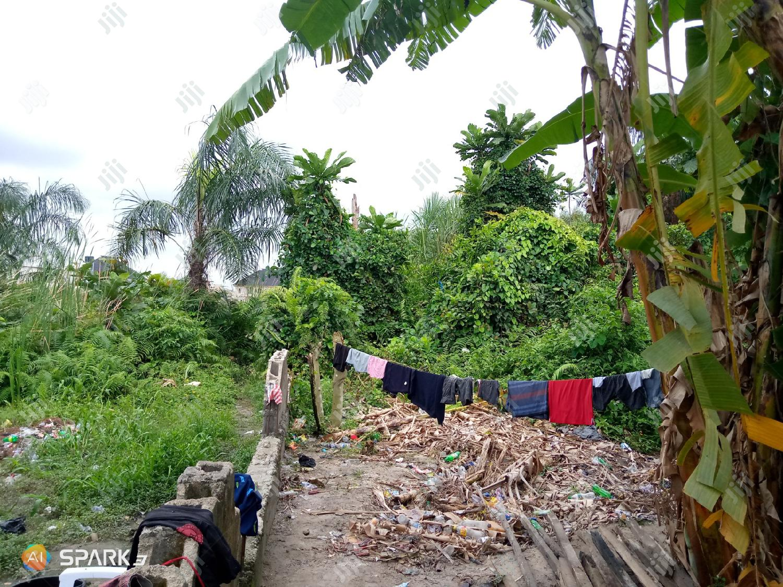 Two(2) Plots of Land at Majek Sangotedo Lekki For Sale.