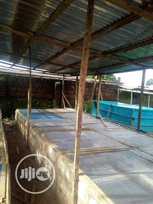 Snail Pen Construction   Building & Trades Services for sale in Edo State, Egor