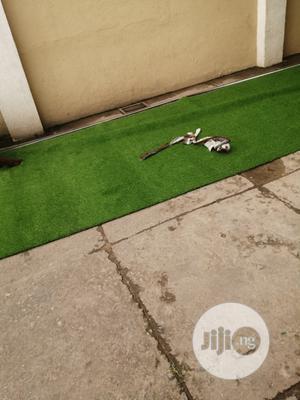 New & Original Artificial Green Grass Carpet For Indoor/Outdoor. | Garden for sale in Lagos State, Ikeja