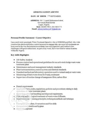 Water Treatment Manager CV   Engineering & Architecture CVs for sale in Lagos State, Alimosho