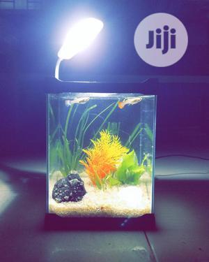 Mini Aquarium 21cm | Fish for sale in Lagos State, Ipaja