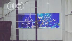 Aquarium Construction   Pet Services for sale in Lagos State, Lekki
