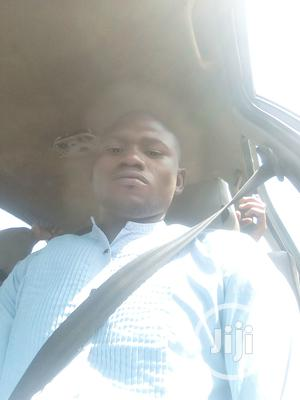 Executive Drivers   Driver CVs for sale in Abuja (FCT) State, Gwarinpa