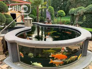 We Make Koi Ponds | Fish for sale in Lagos State, Lekki