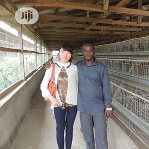 Battery Cage China Factory Poultry Battery Cages | Farm Machinery & Equipment for sale in Ogun State, Ikenne
