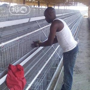 China Factory Battery Cage Best Quality Wholesale Price Poultry Cages | Farm Machinery & Equipment for sale in Oyo State, Ido