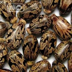 Contraceptive Seeds   Sexual Wellness for sale in Lagos State, Isolo
