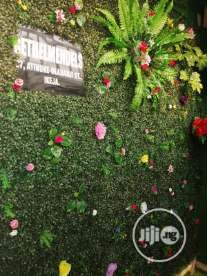 Beautiful Wall Plants For Library And Schools   Garden for sale in Lagos State, Ikeja