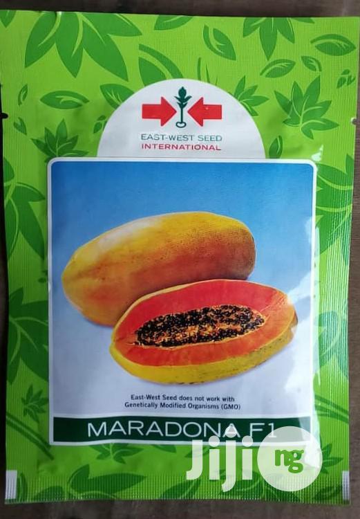 Maradona F1 Semi Dwarf Hybrid Pawpaw Seed