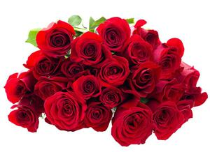 Fresh Rose Flower Red Rose Flower Bouquet Natural Roses | Feeds, Supplements & Seeds for sale in Plateau State, Jos