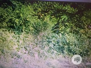 Plots of Land in Golf Road, Lakowe Ibeju Lekki for Sale.   Land & Plots For Sale for sale in Lagos State, Ibeju