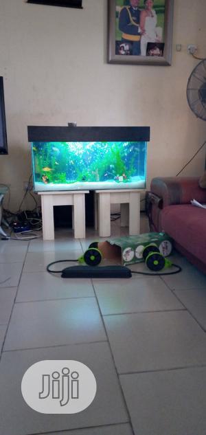 Aquarium Supply | Fish for sale in Lagos State, Ojo