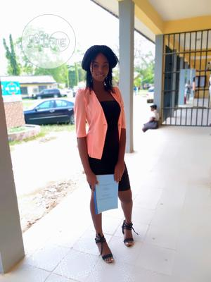 Offline Field Sales Agent - Jiji.Nigeria   Consulting & Strategy CVs for sale in Lagos State, Apapa