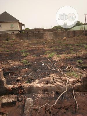 100x200ft Along Ebo Road Benin City   Land & Plots For Sale for sale in Edo State, Benin City