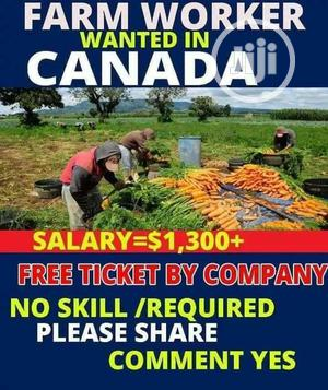 Get a Sure 2years Canada Austria USA Visa On | Travel Agents & Tours for sale in Anambra State, Anambra West