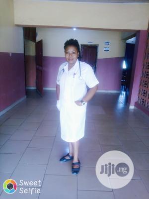 Health Care Assistance   Healthcare & Nursing CVs for sale in Lagos State, Surulere
