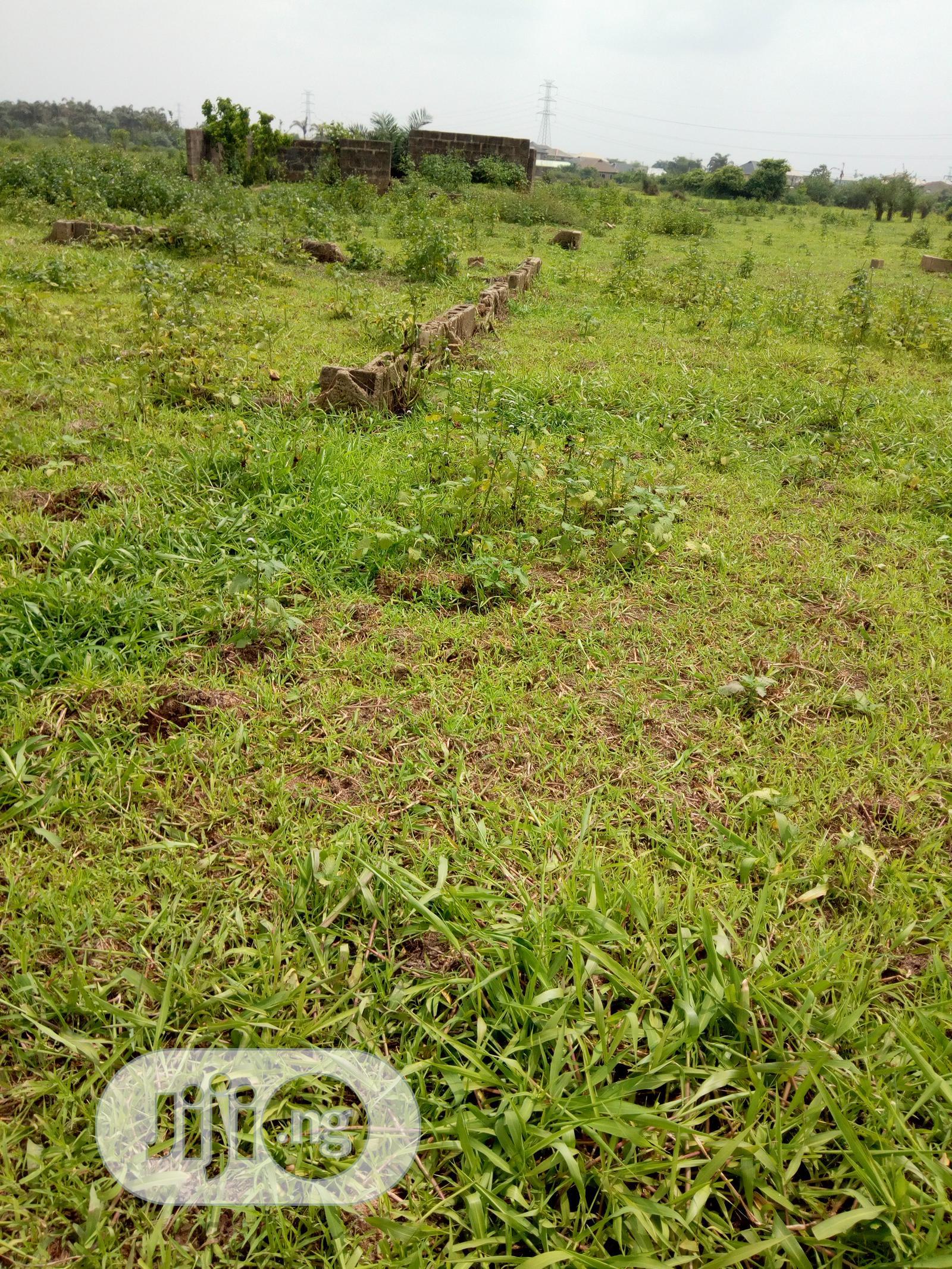 Half Plot Of Land At Magboro Ogun State For Rent   Land & Plots for Rent for sale in Obafemi-Owode, Ogun State, Nigeria