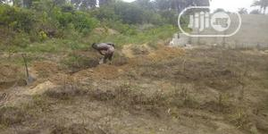 Land Up for Rent at Igbo-Etche Road, New Egbelu Farm Land | Land & Plots for Rent for sale in Rivers State, Obio-Akpor