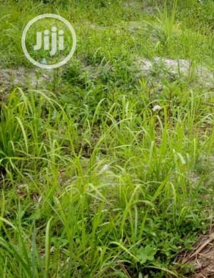 Land For Sale At Ibeju Lekki | Land & Plots For Sale for sale in Lagos State, Ibeju