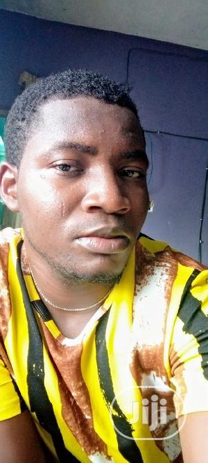 Mr Emmanuel Lawal | Driver CVs for sale in Lagos State, Magodo